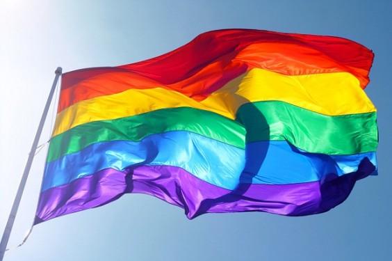 gay-pride-2013-564x375